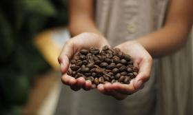 Coffee Beans Aroma